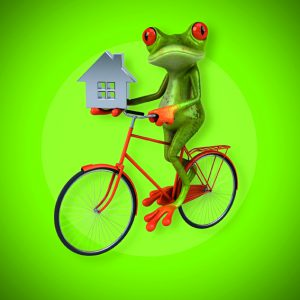 Green and red frog on a bicycle holding a silver house