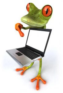 Green and orange frog holding a laptop
